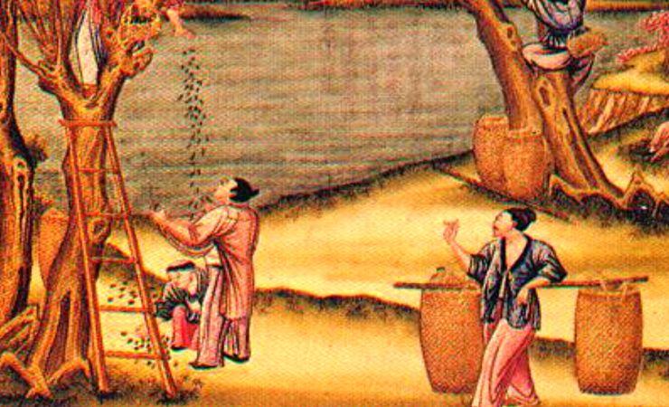 Изготовление шелка в Древнем Китае