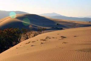 Заповедник «Пески» и парк «Дюна»